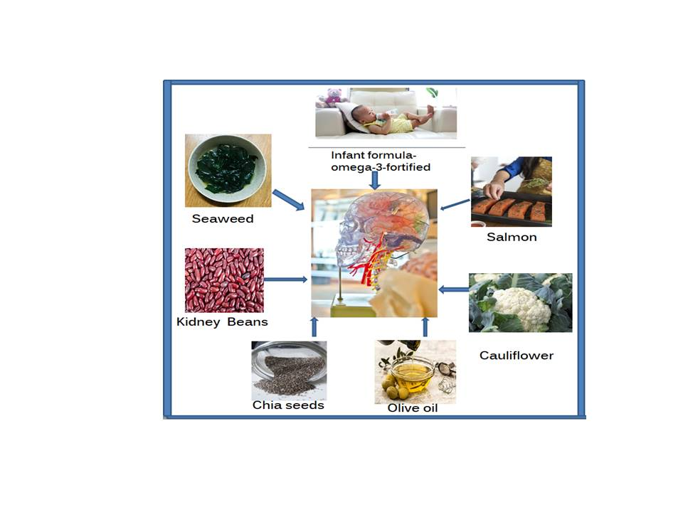 A sampling of food rich in omega-3-fatty acids