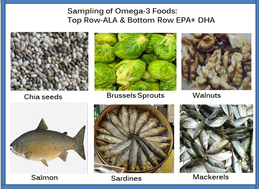 Sampling-of-omega-3-fatty-acids-ALA-EPA-and-DHA