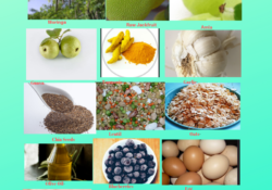 19-choicest-superfoods-featured-images