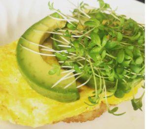 Healthy-Egg-Avocado-Breakfast