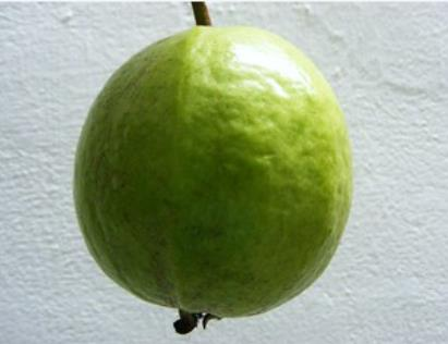 Guava-Midday-Snack