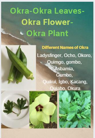 Okra-Leaves-Flower-Fruit