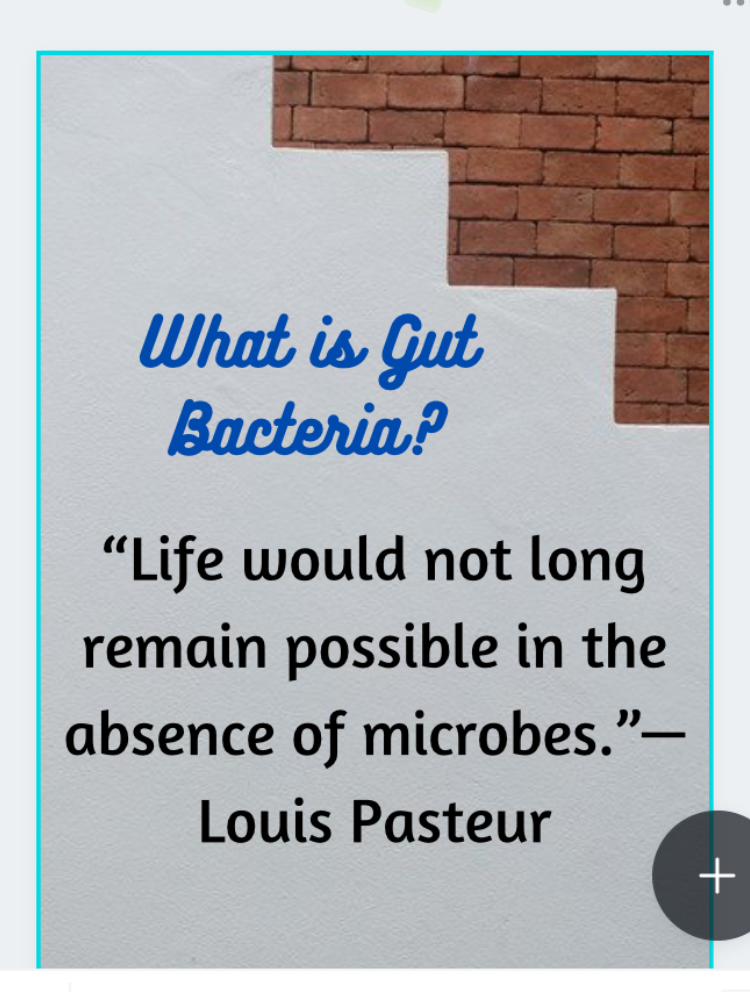 What is gut bacteria?- quote From Louis Pasteur