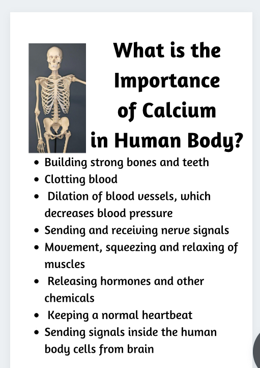 Importance of Calcium in Human Body