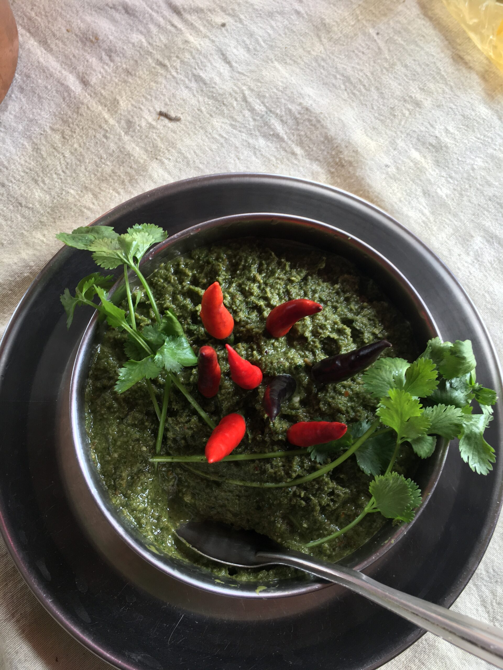 Curry-leaves-chutney-Decorated-with-raw-Chili-coriander-leaves
