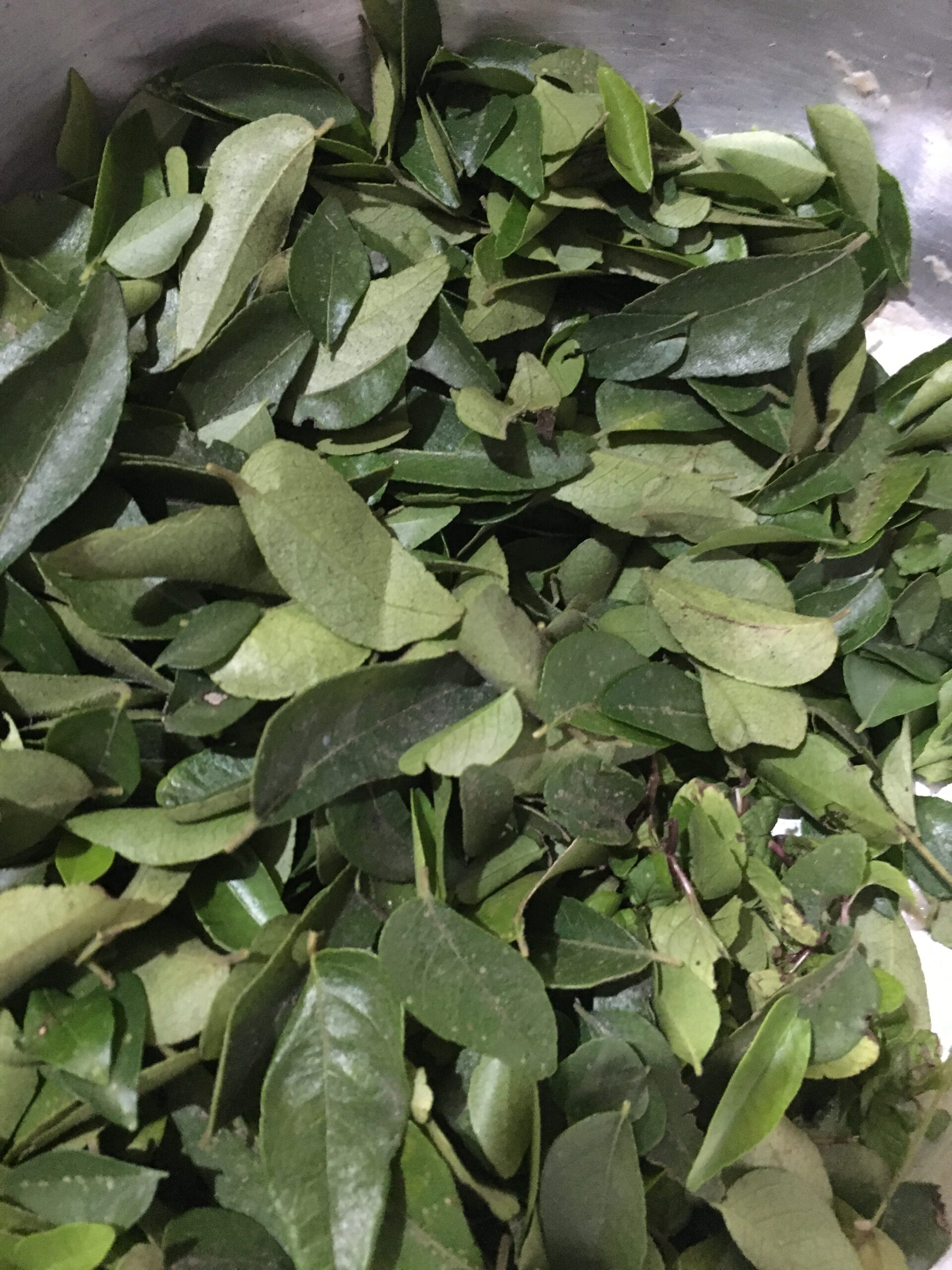 Curry-Leaves-Clean